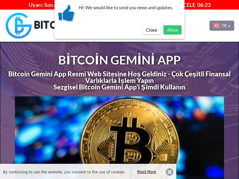The Bitcoin Gemin Turkish 3328